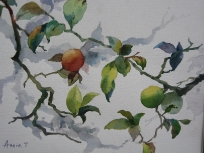 Fruit Branches (SOLD) 16x12