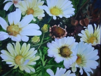 Daisy Patch (SOLD) 17x13